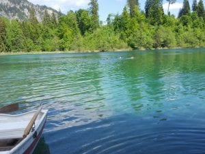 Ruderboot und Schwimmer im Crestasee