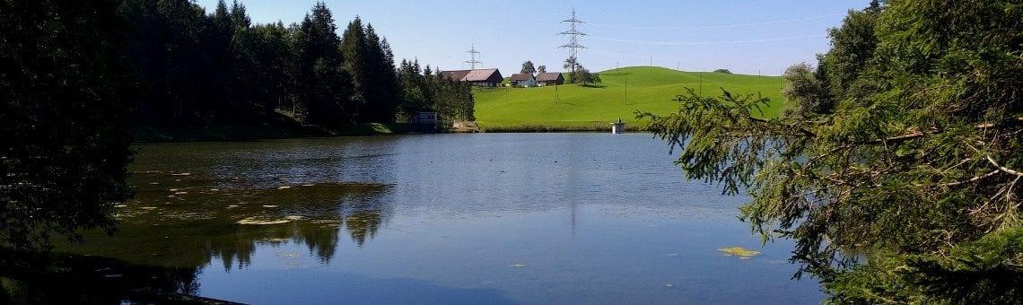 Teufenbachweiher
