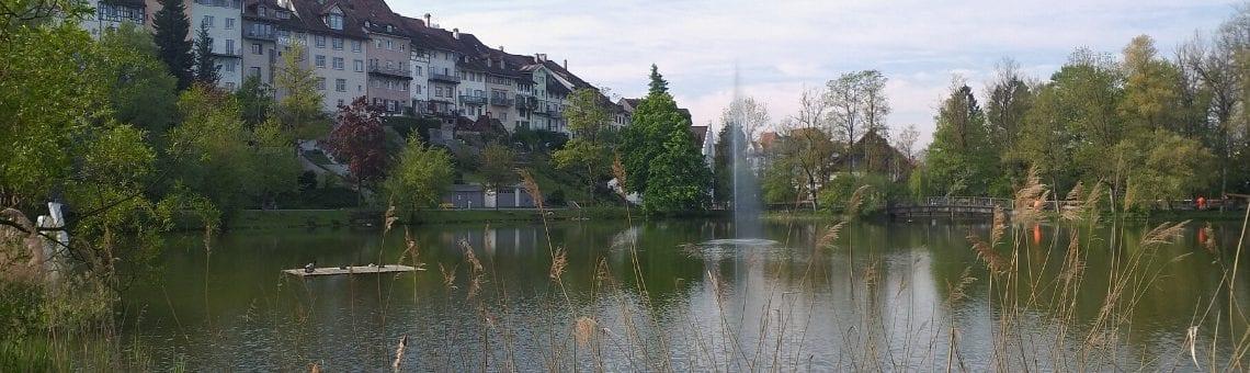 Stadtweiher (Wil)