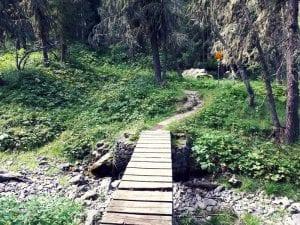 Wanderung Preda Palpuognasee