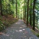 Wanderweg Giessbachfälle Giessbach See