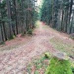 Wanderweg Sihlsee Stöcklichrüz